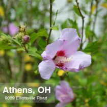 Athens_Ohio_45701_9089_Elliotsville_1_House